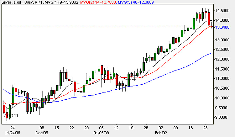 Spot Silver Daily Candle Chart - 25th February 2009