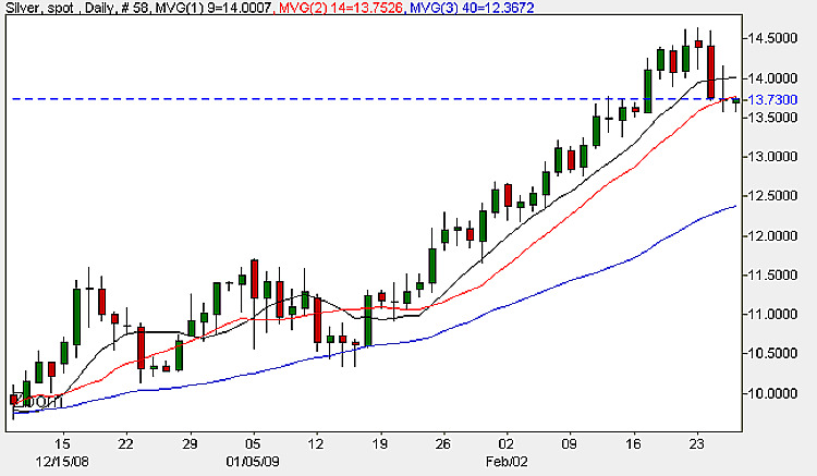 Spot Silver Daily Candle Chart - 26th February 2009
